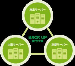 BACK UP SYSTEM